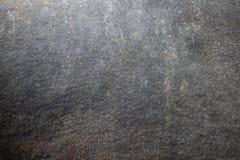 Noshörninghud för bakgrund och texturer arkivfoto