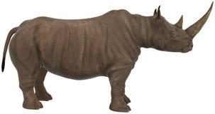 Nosorożec, nosorożec, przyroda, ilustracja fotografia royalty free