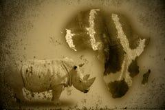 Nosorożec i Afryka Obraz Stock