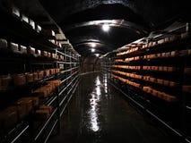 Nosowy ser na metalu odkłada w grocie obrazy stock