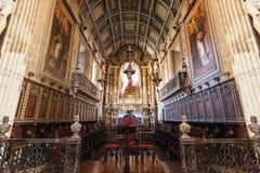 Nossa Senhora a Dinamarca Oliveira Imagens de Stock Royalty Free