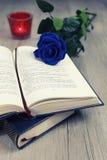 Nostalgi: Gammal bok i fransk och blå ros royaltyfri bild