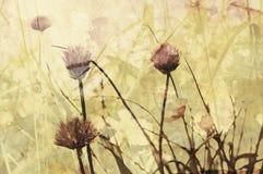 Nostalgic autumn background Royalty Free Stock Image