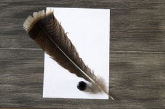 The nostalgic bird feather pen and paper. Nostalgic pens, write letters, calligraphy pens, pens for birds, write white pages and letters Stock Photos