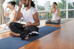 Nostril breathing. Group of people sitting in yoga position and practicing nostril breathing stock photos