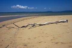 Nosy пляж стоковые фотографии rf