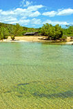 Nosy be  beach seaweed in indian ocean madagascar house Royalty Free Stock Photos