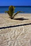 nosy be madagascar beach Stock Photo