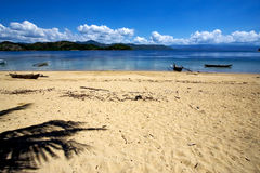 nosy be rock stone branch boat palm lagoon  madagascar Royalty Free Stock Images