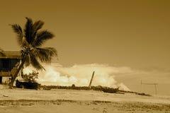 Nosy Komba sepia beach Stock Image