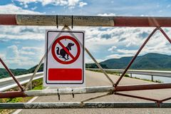Not allow dog feces sign. In the park Royalty Free Stock Images