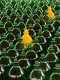 Not conforming. Many green bottles and only two yellow painted ones royalty free stock photo