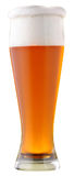Not filtered beer Royalty Free Stock Photo