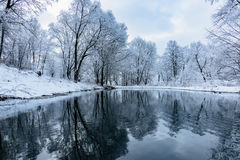 Not Frozen Pond In Winter Royalty Free Stock Photos