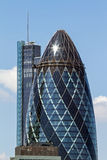 This is not gherkin, but cigar from Sir Winston Royalty Free Stock Images