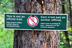 This is not an official trail sign in the forest.  Royalty Free Stock Photography