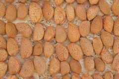 Not peeled almond- background Royalty Free Stock Photography