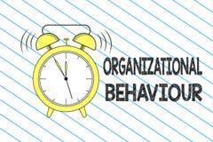 Nota da escrita que mostra o comportamento de organização A foto do negócio que apresenta o estudo dos povos da maneira interage  ilustração do vetor