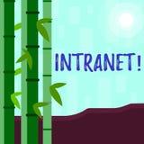 Nota da escrita que mostra o intranet A rede privada apresentando da foto do neg?cio de uma empresa ligou redes locais ilustração stock