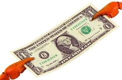 Nota de banco do papel do dólar dos EUA da preensão da garra do caranguejo isolada Fotografia de Stock