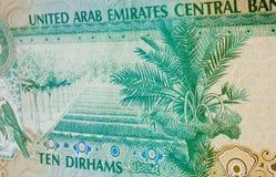 Nota de banco United Arab Emirates da palma de tâmara Imagens de Stock