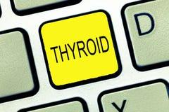 Nota de la escritura que muestra la tiroides La glándula de exhibición de la foto del negocio en cuello secreta las hormonas que  imagen de archivo