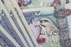 Nota do close up dos dirhams da moeda dos UAE Fotografia de Stock Royalty Free
