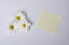 Nota e fiore Fotografia Stock Libera da Diritti
