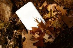 Nota en blanco de papel de tarjetas con el espacio de la copia en fotografía del fondo del otoño de la naturaleza Imagenes de archivo