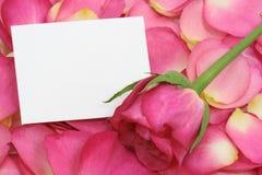 Nota en blanco sobre los pétalos rosados Imagen de archivo