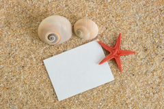 Nota en la arena con las cáscaras Imágenes de archivo libres de regalías