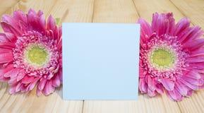Nota pegajosa e flor cor-de-rosa 15 Fotografia de Stock
