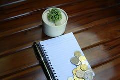 notaboek, pen, muntstukken en decoratie op houten achtergrond wordt geïsoleerd die stock foto