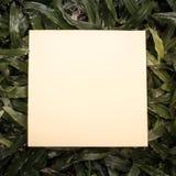 Notadocument op groen gras Stock Foto's