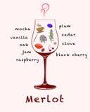 Notas da degustação de vinhos Foto de Stock Royalty Free