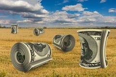 Notas de dólar no campo Fotografia de Stock Royalty Free