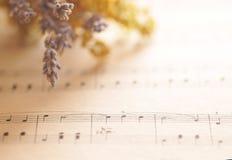 Notas de la música con las flores Imagen de archivo libre de regalías