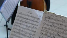 Notas de la música de la marcha de boda almacen de metraje de vídeo