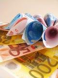 Notas euro - flor Fotos de archivo libres de regalías