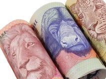 Notas surafricanas rodadas del dinero imagenes de archivo