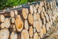 Notation d'industrie de bois de charpente image libre de droits