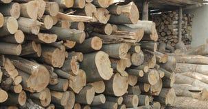 Notation de bois de construction Coupez fra?chement les rondins en bois d'arbre empil?s  Stockage en bois pour l'industrie photos libres de droits