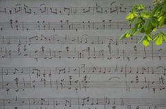 notatka muzykalny personel Fotografia Royalty Free