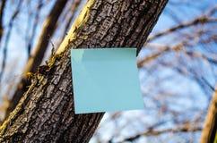 Notatka na drzewie Zdjęcia Royalty Free