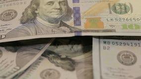 Notatki dolary na stole Odgórny widok Ogromna liczba dolary na stole blisko dolarów, Zieleni notatki na stole zdjęcie wideo