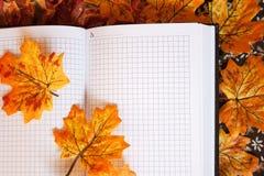 Notatnik na jesień liściach Obraz Royalty Free