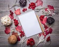 Notatnik otaczał jesieni dekoracje, liście, jagody, piłki robić rattan, miejsce dla teksta, ramy drewniany nieociosany tło Fotografia Royalty Free