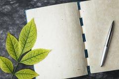 Notatnika papier z teksturą, żółty liść Obraz Royalty Free