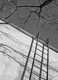 Notausgang, Schattenbaum auf Haus Schwarzweiss-Rahmen, eine Treppe oben Stockfotografie