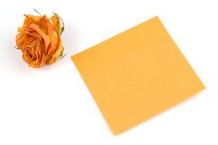 Note. Empty orange note paper and rose bud isolated over white Stock Images